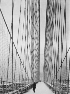 Steel Cabled Bridge by Hulton Archive