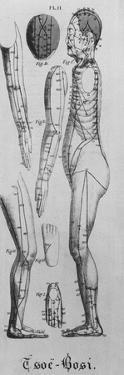 Human Figure Profile with Acupuncture Points and Meridians Identified, 1825