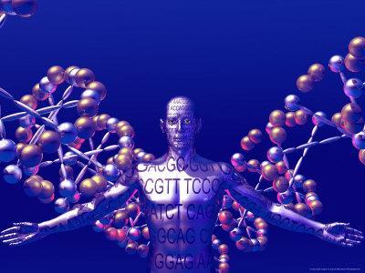 https://imgc.allpostersimages.com/img/posters/human-genome_u-L-PXYTNL0.jpg?p=0