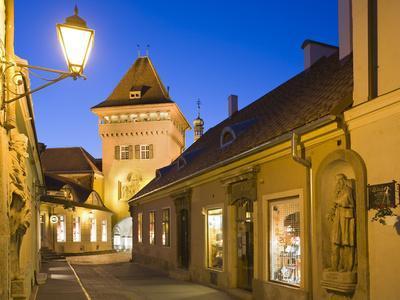 https://imgc.allpostersimages.com/img/posters/hungary-kshszeg-town-gate-lantern-night_u-L-Q11YGK70.jpg?p=0