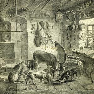 Hunt Austria Dogs 1891