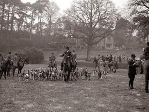 Hunting Men Riding Horses with a Pack of Hounds