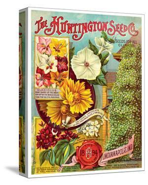 Huntington Seed Indianapolis