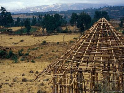 https://imgc.allpostersimages.com/img/posters/hut-construction-above-the-flatlands-omo-river-region-ethiopia_u-L-P585040.jpg?p=0