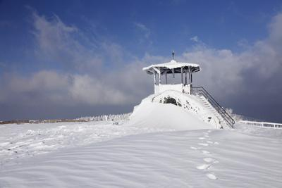 https://imgc.allpostersimages.com/img/posters/hut-for-viewing-on-the-summit-of-the-kandel-black-forest-baden-wurttemberg-germany_u-L-Q1EY0XP0.jpg?artPerspective=n