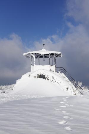 https://imgc.allpostersimages.com/img/posters/hut-for-viewing-on-the-summit-of-the-kandel-black-forest-baden-wurttemberg-germany_u-L-Q1EY1WE0.jpg?artPerspective=n