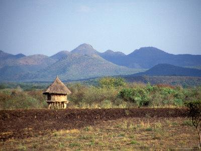 https://imgc.allpostersimages.com/img/posters/hut-in-field-near-konso-village-omo-river-region-ethiopia_u-L-P584VO0.jpg?p=0