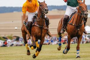 Horses Running in a Polo Match. by hutch photography