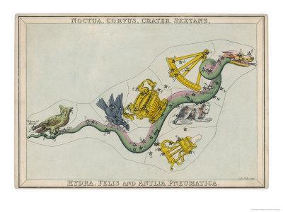 https://imgc.allpostersimages.com/img/posters/hydra-constellation-including-an-owl-a-raven-and-a-sextant_u-L-OTHTN0.jpg?artPerspective=n