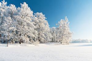 Winter Park in Snow by Hydromet