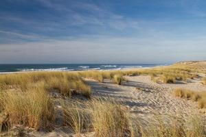 Atlantic Coast and Cap Ferret by I hope you'll like it