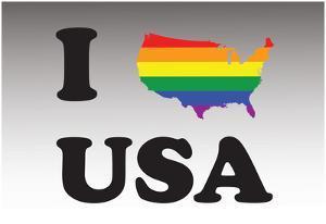 I Love Usa Pride
