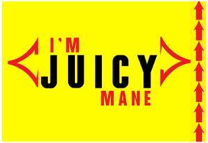I'm Juicy 2