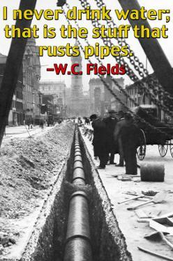 I Never Drink Water; That is the Stuff That Rusts Pipes