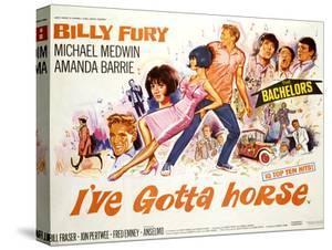 I'Ve Gotta Horse