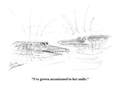 https://imgc.allpostersimages.com/img/posters/i-ve-grown-accustomed-to-her-smile-cartoon_u-L-PGR2990.jpg?artPerspective=n