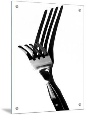 Fork with Reflection of Fork by I.W.