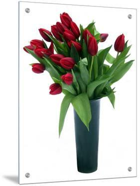 Red Tulips in Grey Vase by I.W.