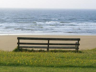 Bench Overlooking the Sea, Sutherland by Iain Sarjeant