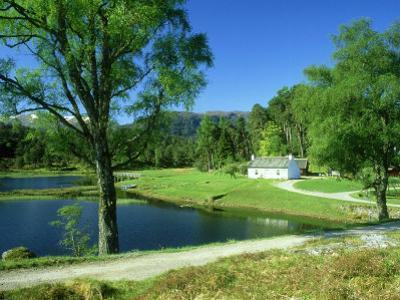 Glen Affric Nnr, Scotland by Iain Sarjeant