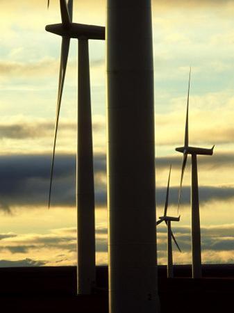 Wind Turbines, Caithness, Scotland by Iain Sarjeant