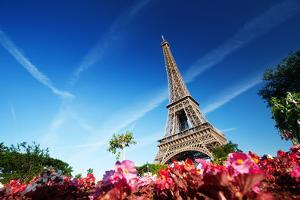 Sunny Morning and Eiffel Tower, Paris, France by Iakov Kalinin