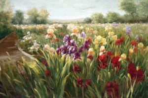 Fields of Iris by Ian Cook