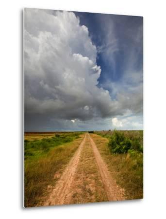 Mad Island Marsh Preserve, Texas: a Dirt Path Leading Throughout the Marsh.
