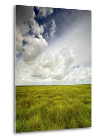 Mad Island Marsh Preserve, Texas: Landscape of the Marsh's Coastal Plains Near Sunset.