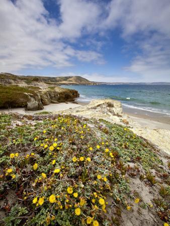 Santa Rosa Island, Channel Islands National Park, California