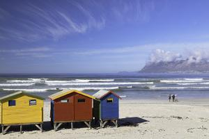 Beach huts on Muizenburg Beach, Cape Town, Western Cape, South Africa, Africa by Ian Trower