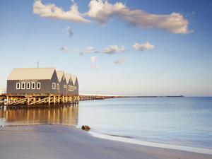 Busselton Pier at Dawn, Western Australia, Australia by Ian Trower