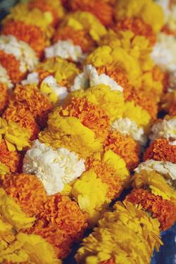 Flower Offerings at Temple, Kathmandu, Nepal, Asia by Ian Trower