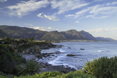 Hermanus, Western Cape, South Africa, Africa by Ian Trower