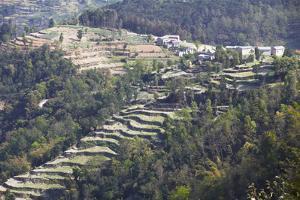 Hillside Village and Terraced Fields, Dhulikhel, Kathmandu Valley, Nepal, Asia by Ian Trower