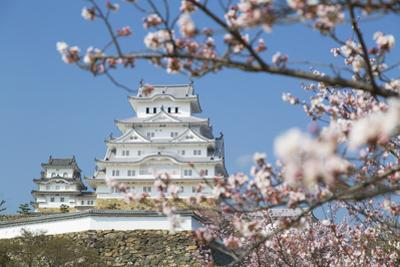 Himeji Castle, Himeji, Kansai, Honshu, Japan by Ian Trower
