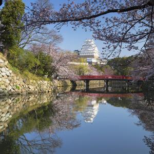 Himeji Castle (Unesco World Heritage Site), Himeji, Kansai, Honshu, Japan by Ian Trower