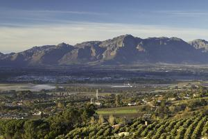 Paarl Valley at sunrise, Paarl, Western Cape, South Africa, Africa by Ian Trower