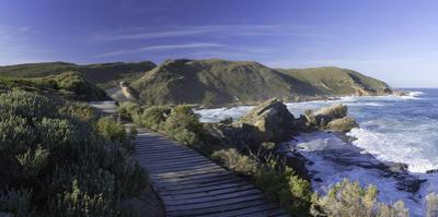 Robberg Nature Reserve, Plettenberg Bay, Western Cape, South Africa, Africa