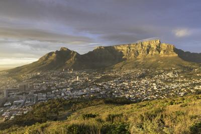 Table Mountain at dawn, Cape Town, Western Cape, South Africa, Africa by Ian Trower