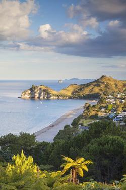 View of Hahei Beach, Coromandel Peninsula, North Island, New Zealand by Ian Trower