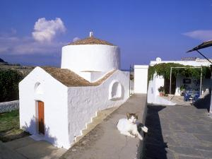 Cat Beside Church in Lindos, Greece by Ian West