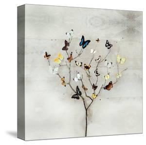 Tree of Butterflies by Ian Winstanley