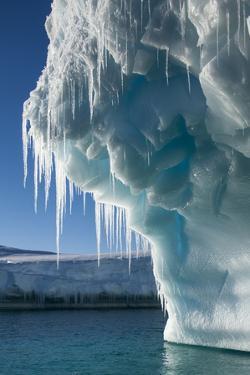 Iceberg, Petermann Island, Antarctica