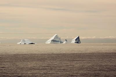 https://imgc.allpostersimages.com/img/posters/icebergs-in-greenland_u-L-Q10VER20.jpg?artPerspective=n