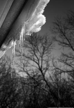 Icicles on Gutter