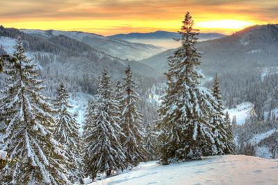Winter Landscape by igabriela