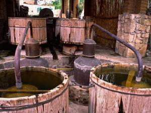 Mezcal Distillery in Santiago Matatlan, Los Danzantes, Matatlan, Oaxaca, Mexico by Igal Judisman