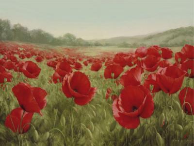 Field Of Poppies by Igor Levashov
