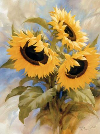 Sunflowers by Igor Levashov